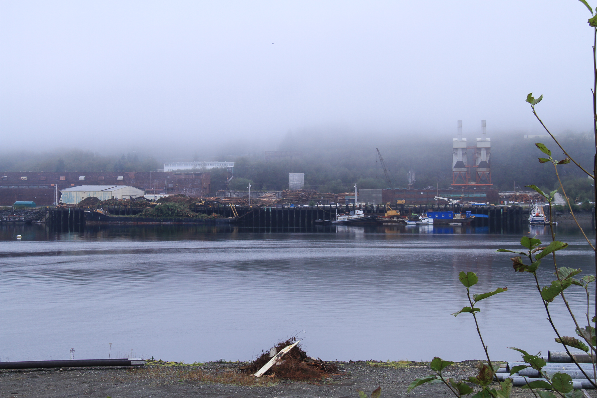 The former site of the Ketchikan Pulp Company, outside of Ketchikan – one of two giant pulp mills that used to consume Tongass National Forest logs until both shuttered in the 1990s.