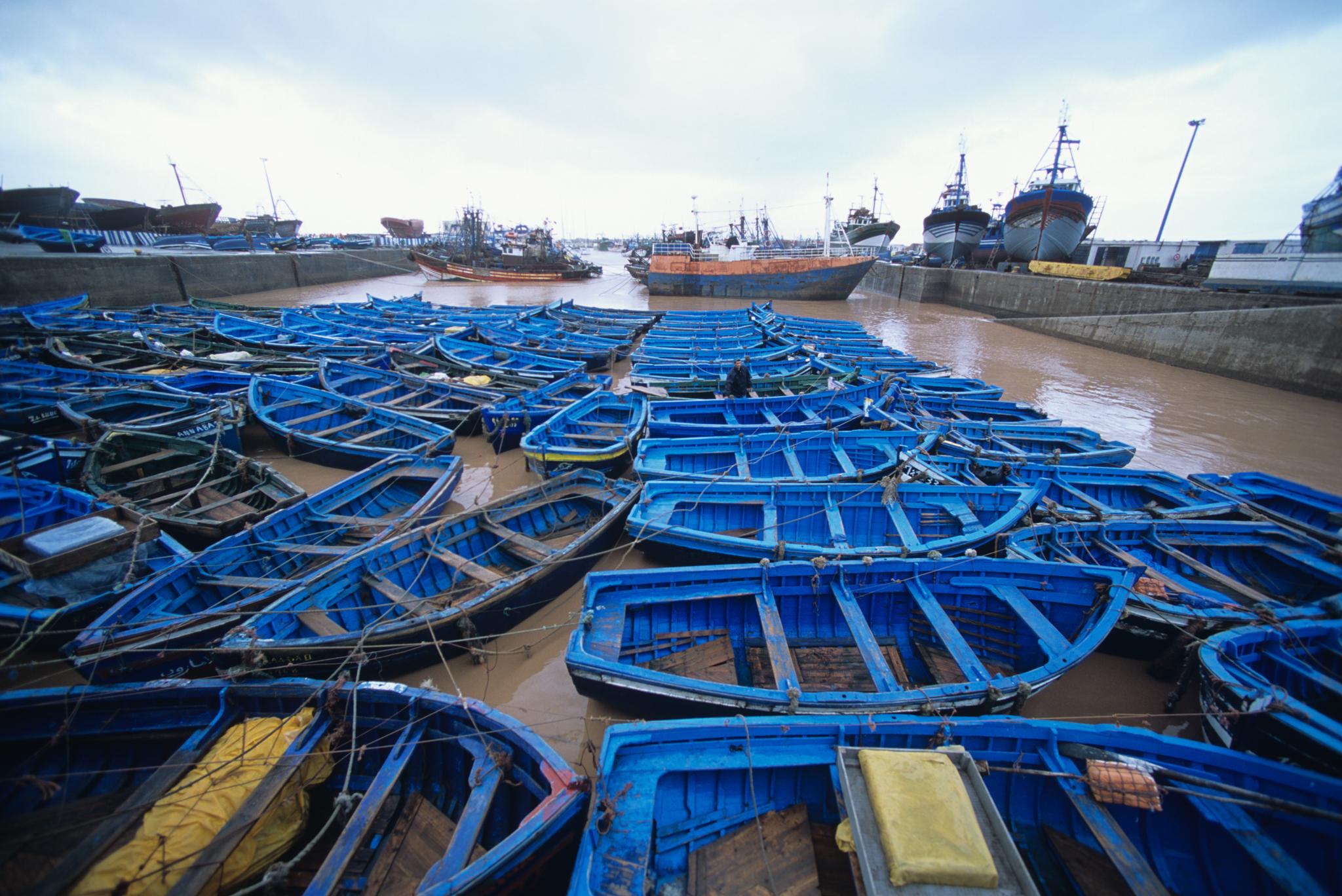 Fishing dories at Essaouira, Morocco. © Jeff Rotman / jeffrotman.com