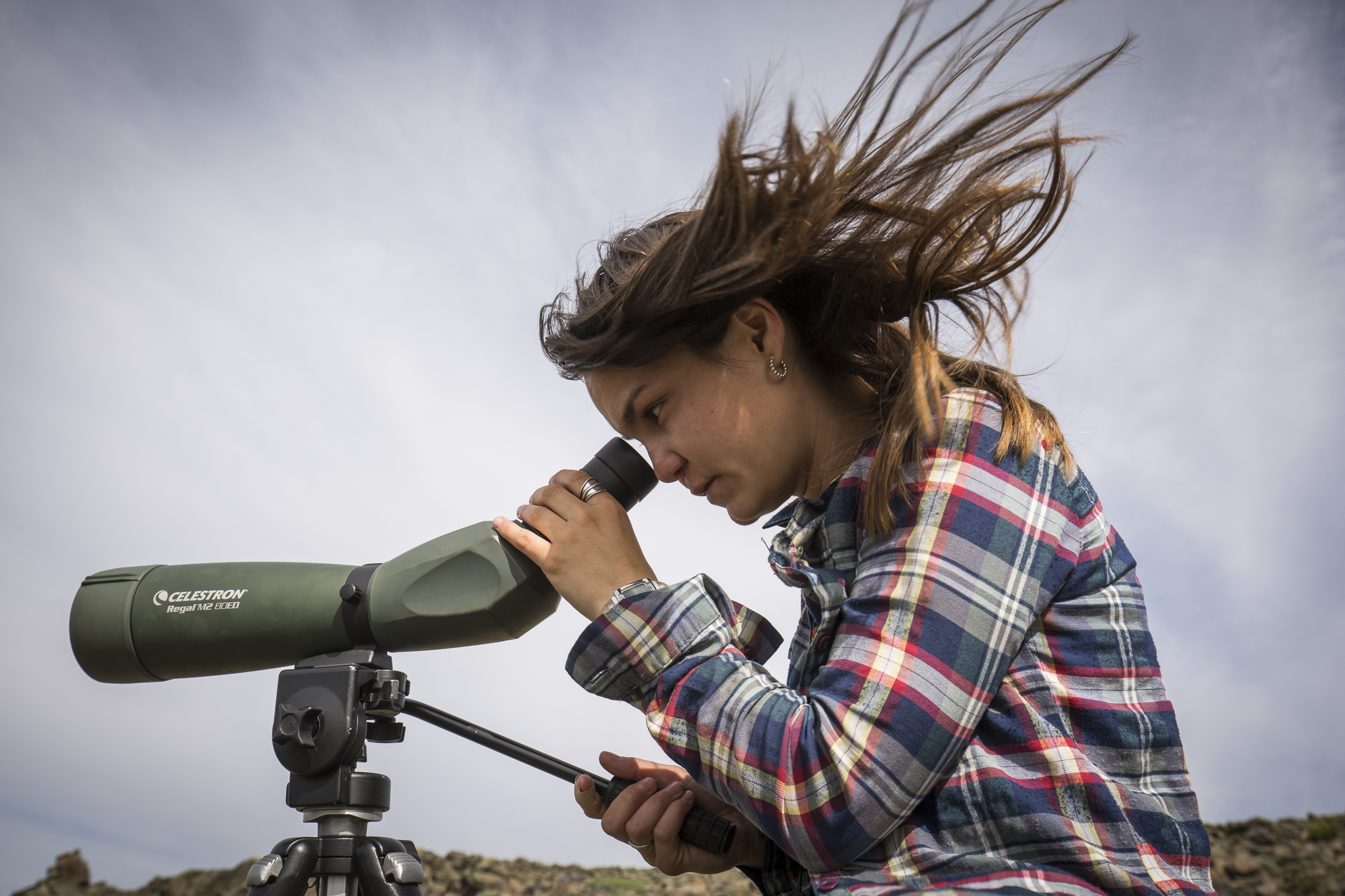 Lucia Belen Martin uses a spotting scope to monitor the grebe colony on the lake where she's currently stationed.