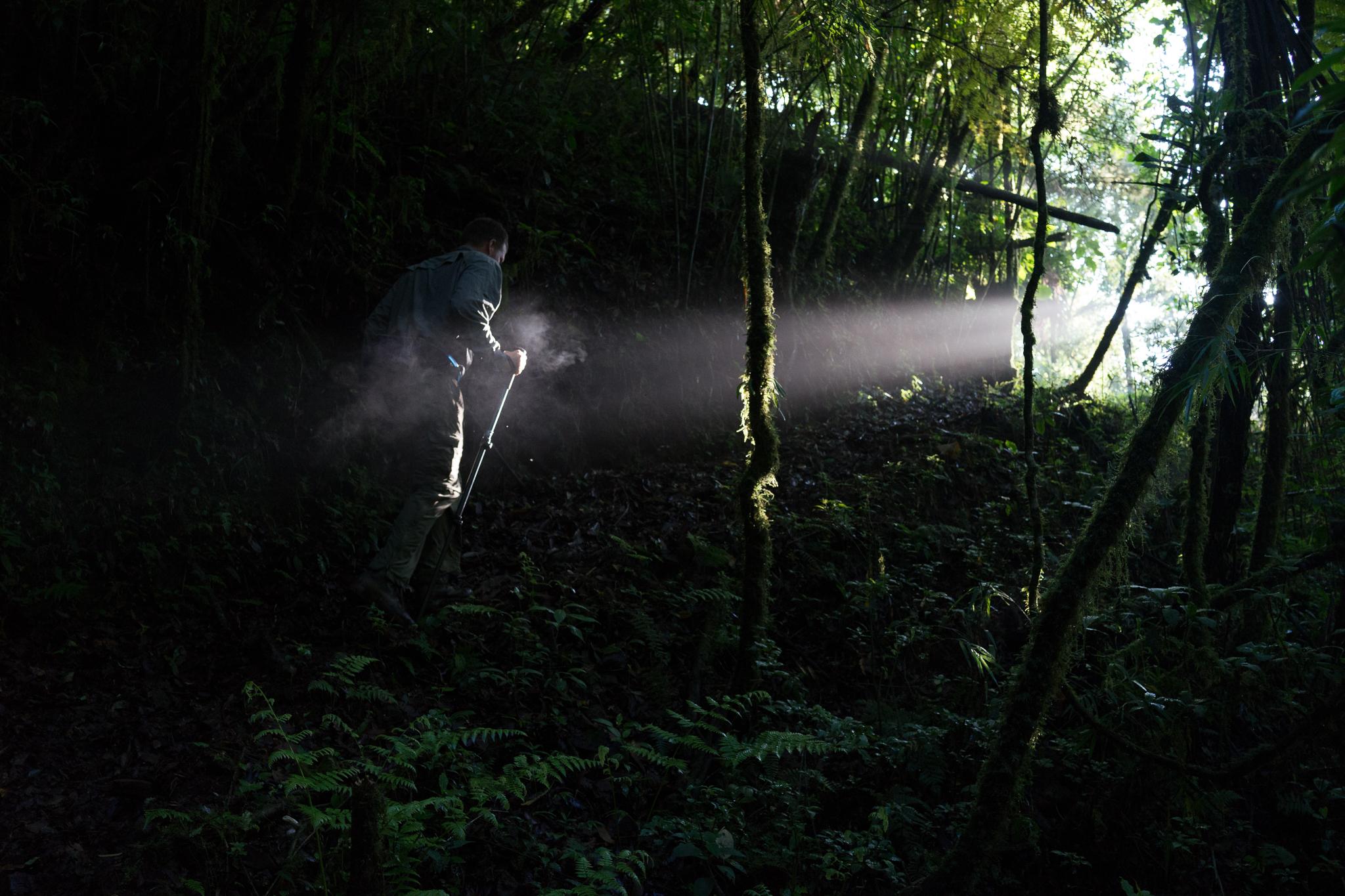 Writer Erik Vance treks into the cloud forest near El Zapotal, Veracruz.