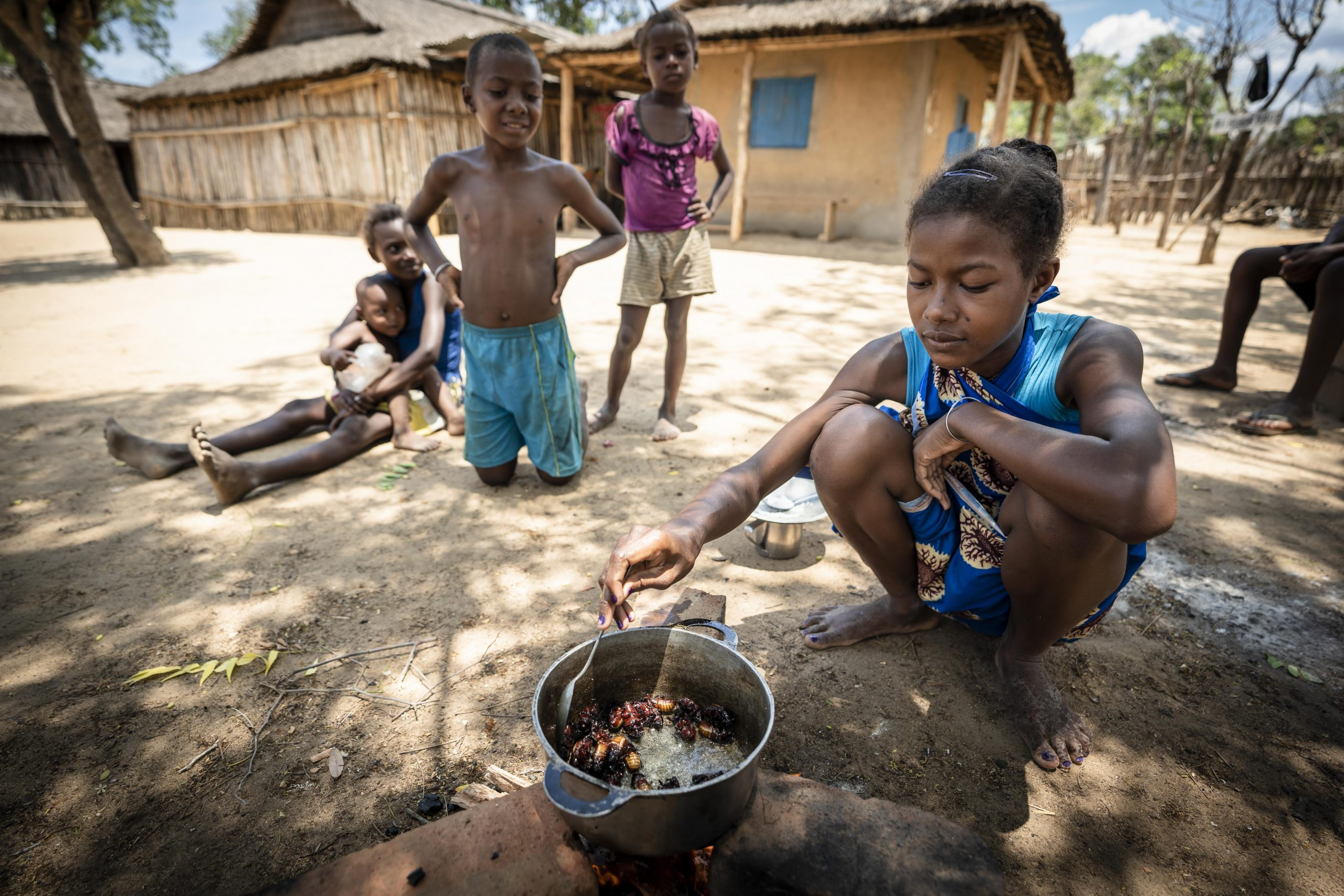 In Beroboka, a village within the Menabe Antimena Protected Area, children hunt for rhinoceros beetles—a favorite snack.