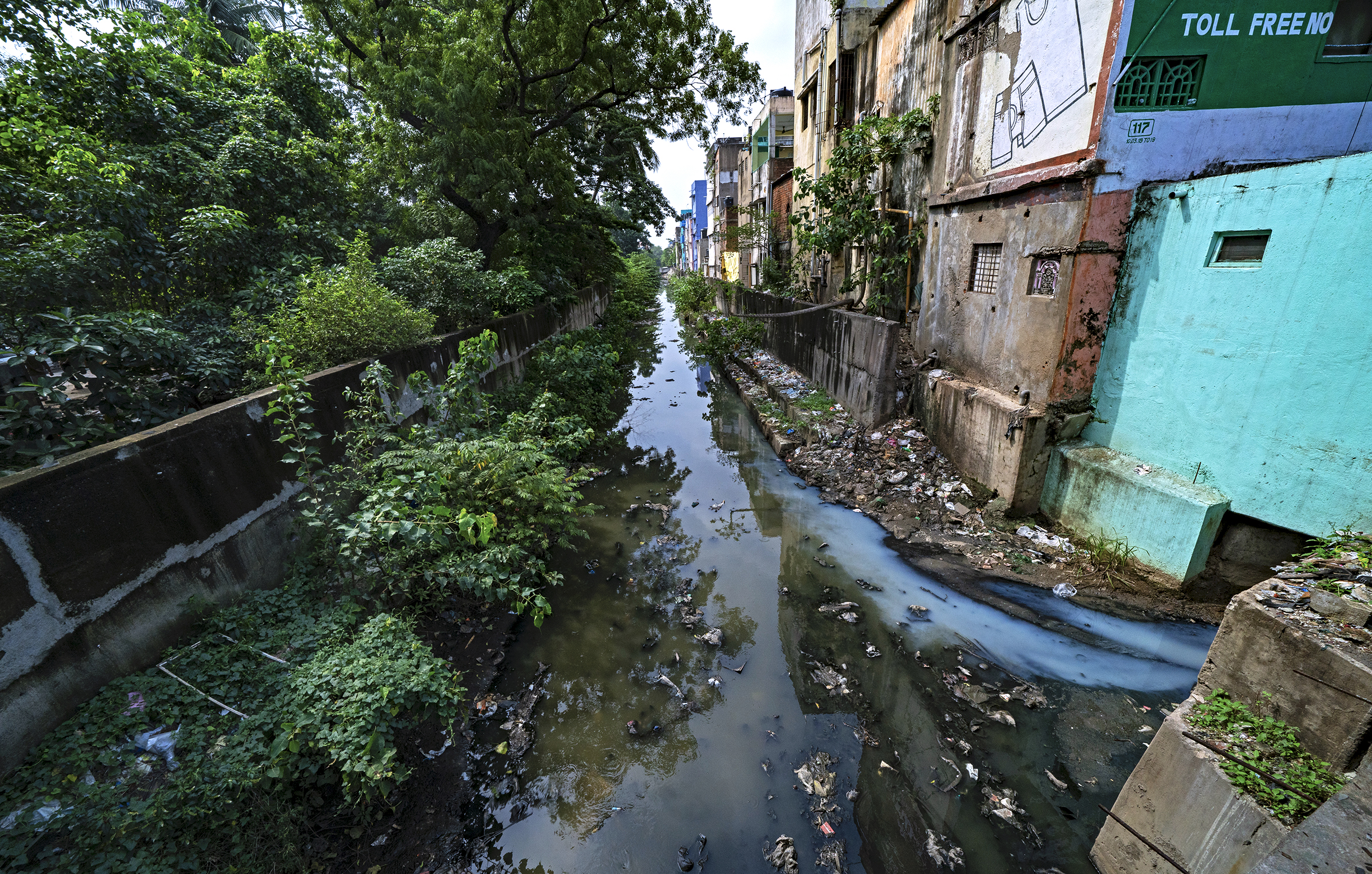 Stormwater as well as garbage and sewage collect in Chennai's Mambalam Canal.