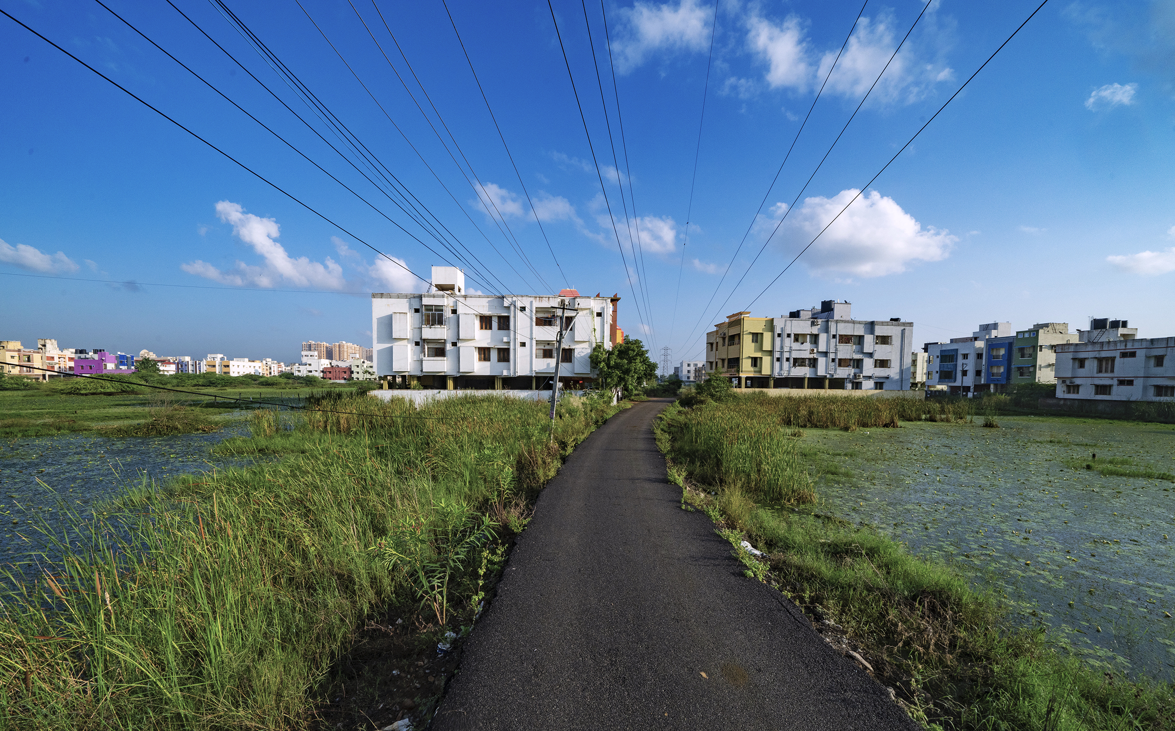 Rampant development has decimated marshlands around Chennai, impacting the city's ability to control floods, store water, and protect native biodiversity.