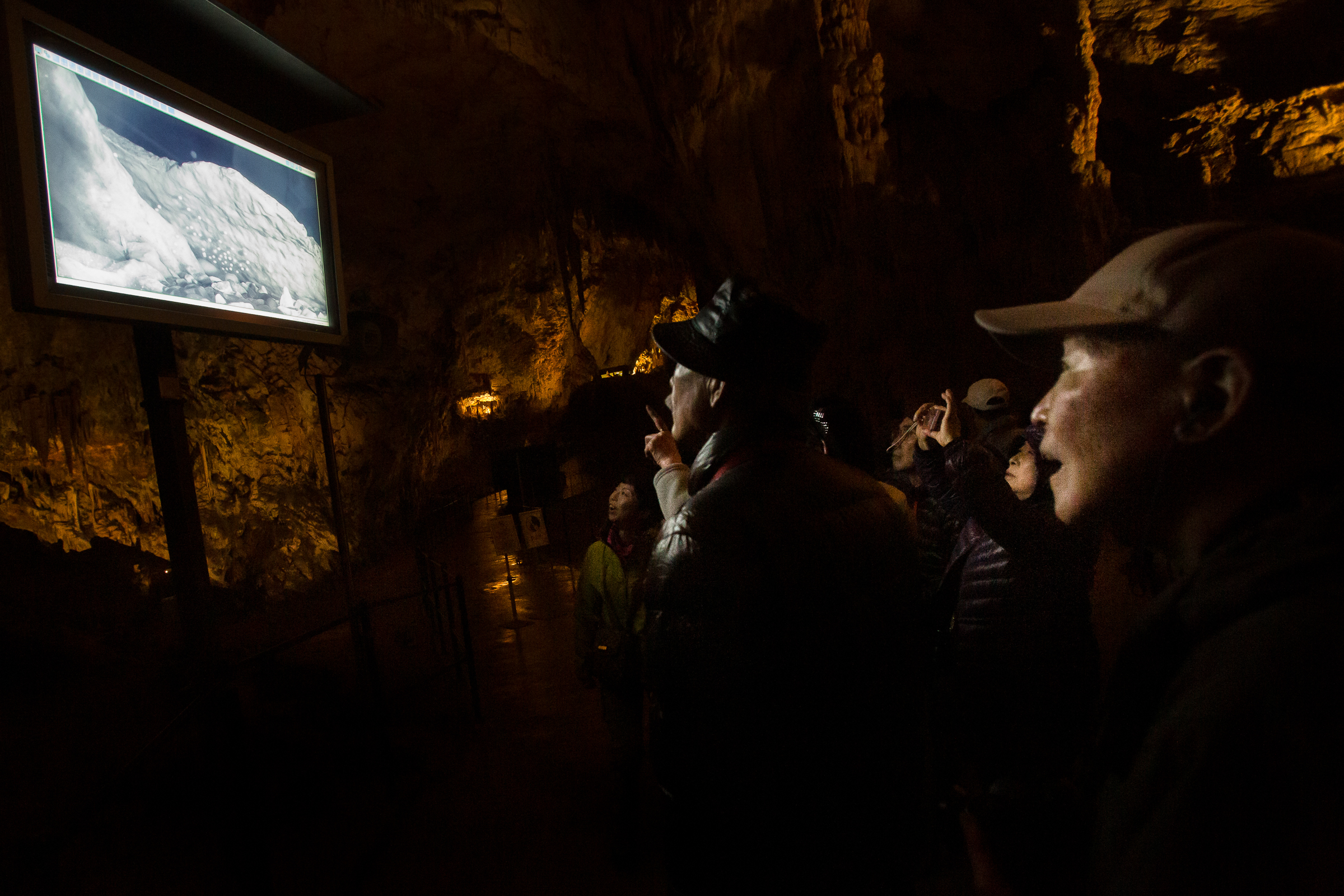 Tourists at Postojna Cave Park watch a live video feed of a female olm guarding her eggs.