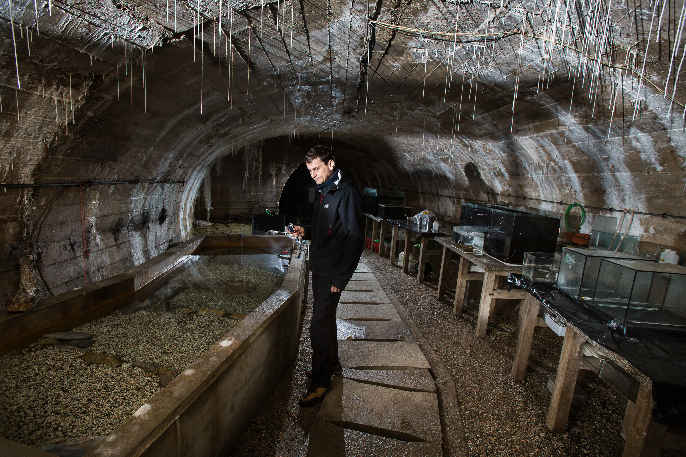 Gregor Aljančič cares for olms in the cave's main chamber, where his father established a lab 60 years ago.