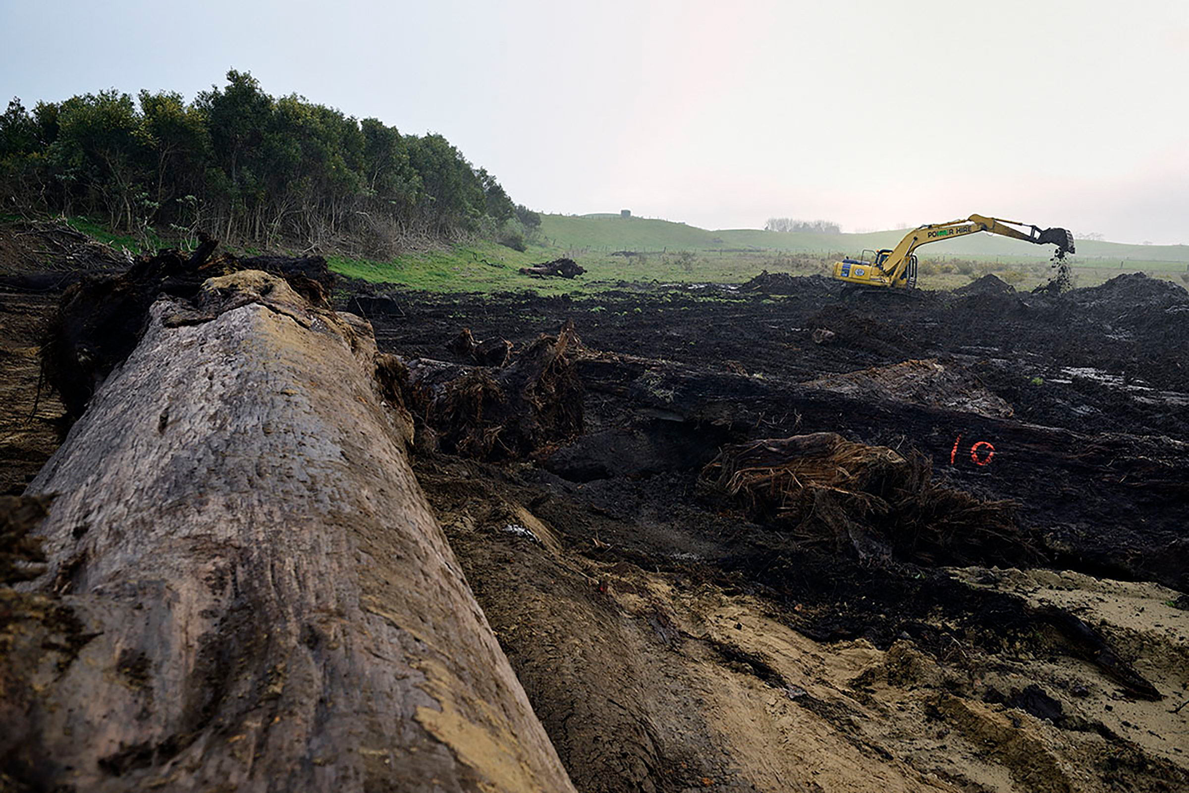 Swamp kauri extractors dig for the buried logs in a farm paddock in Northland, hoping to sell the timber on the international market. Photograph by Arno Gasteiger.