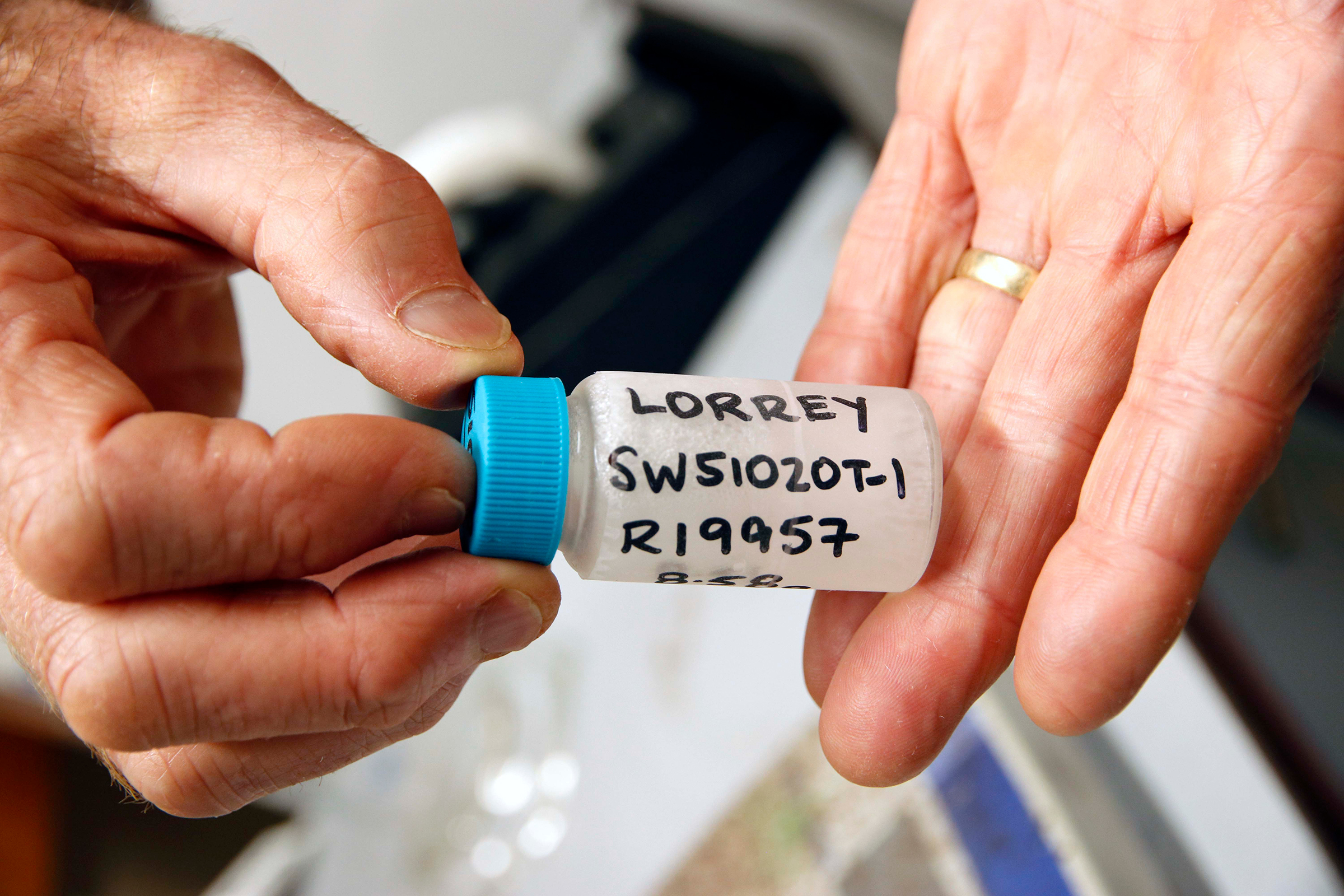 Cellulose samples are then converted into benzene. Hogg adds a scintillator and places the vial into a scintillation spectrometer, which detects pulses of light every time a radiocarbon atom decays. The number of flashes enables him to calculate the sample's radiocarbon age. Photograph by Kate Evans.