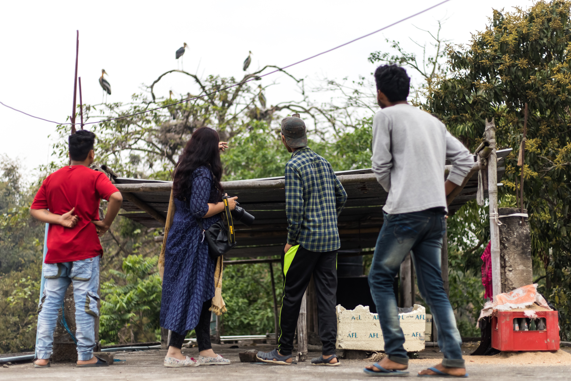 "Biologist Purnima Devi Barman is pictured with team members observing nesting greater adjutants, which have chosen to nest in a ""Hargila Army"" member's backyard."
