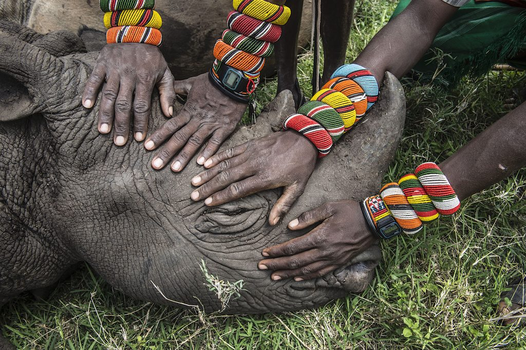 Lew Wildlife Conservancy, Kenya—© Ami Vitale