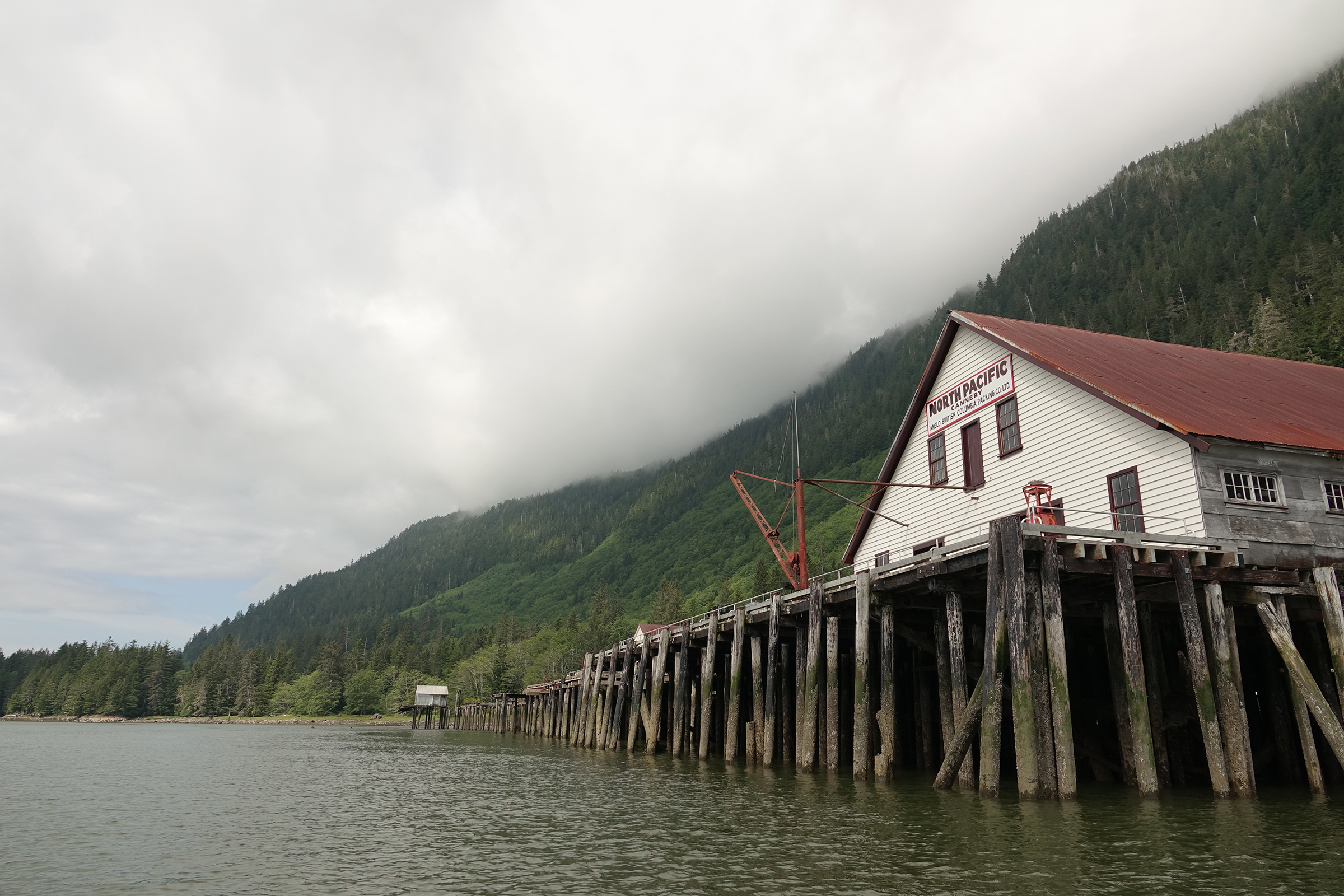 On the north bank of the Skeena River, just west of the ruins of Port Essington, sits this disused cannery, now the North Pacific Cannery Museum. None of the more than a dozen canneries that once operated along the Skeena are still in operation today. Photograph by Lesley Evans Ogden