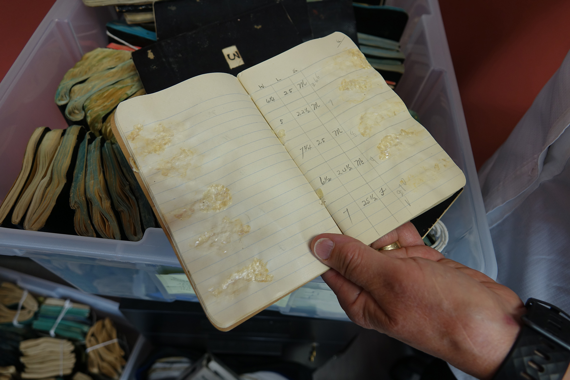 Michael Price holds one of the original sockeye salmon notebooks where fisheries overseer Robert Gibson, in 1919, recorded the length and weight of each fish, and affixed a sample of the fish's scales. Photograph by Lesley Evans Ogden