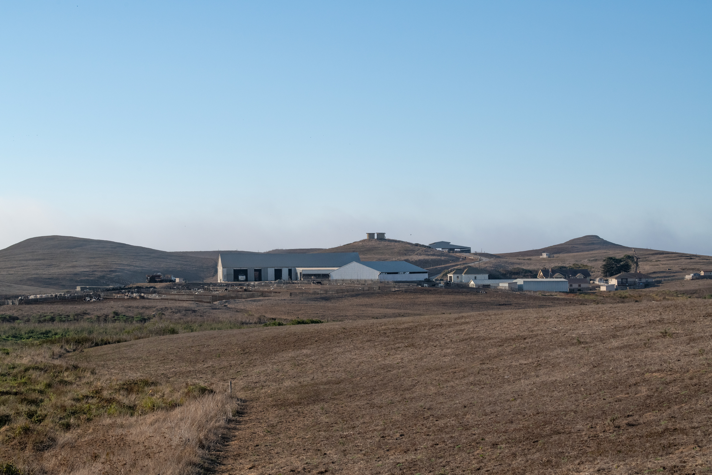 The I Ranch sits on and runs a commercial dairy operation on leased land in Point Reyes National Seashore.
