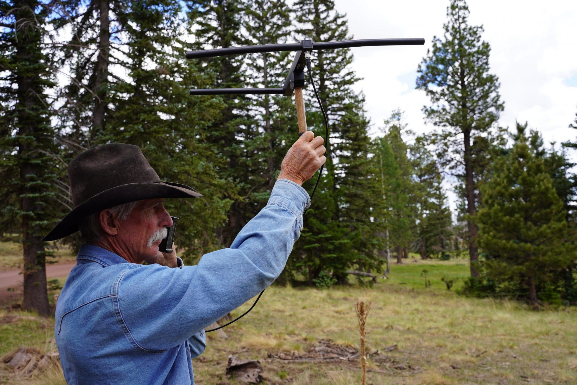 Range Rider Jay Brad Miller raises an antenna near a grazing area in the Apache-Sitgreaves National Forest. The antenna, connected to an electronic receiver, detects signals from wolves outfitted with GPS collars—a new tool that Miller credits with helping him keep cattle away from wolves. Photograph by April Reese