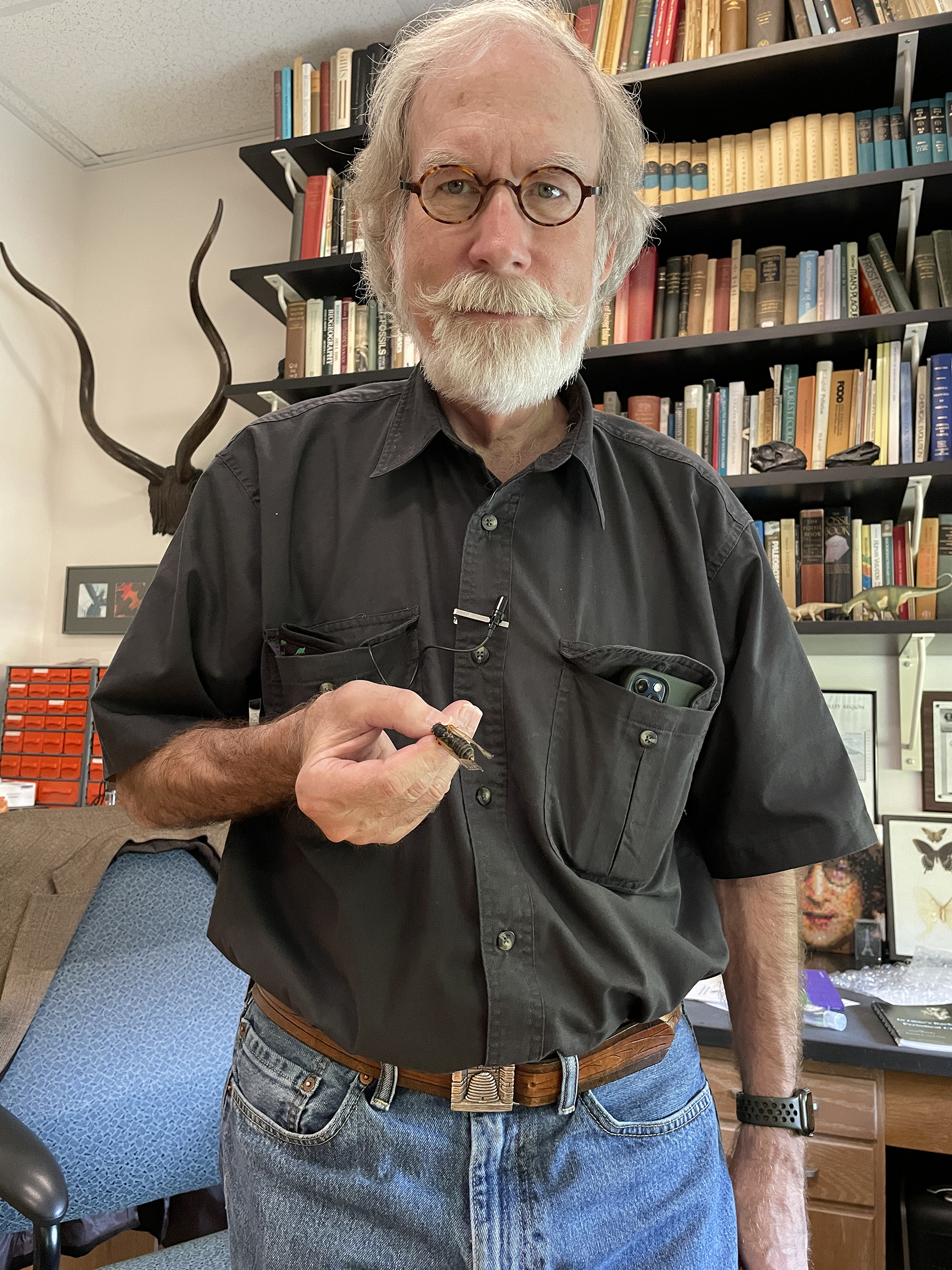 Entomologist Gene Kritsky, an expert on periodical cicadas, stands in his office at Mount St. Joseph University with a cicada specimen in hand. Photograph by Jane C. Hu